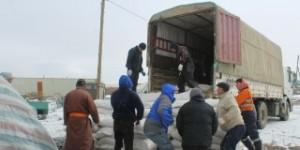 Малчдад хүргэх тэжээлийн тусламж Говь-Алтай аймагт ирж дууслаа.